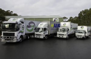 Bells Removals Fleet of Trucks